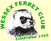 Wessex Ferret Club