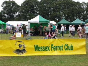 The Wessex Ferret Club