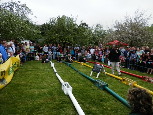 All the fun of the Shapwick Country Fair